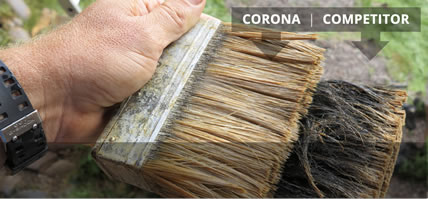 Corona Brushes
