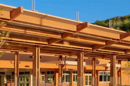 Log Homes | Exterior Protection